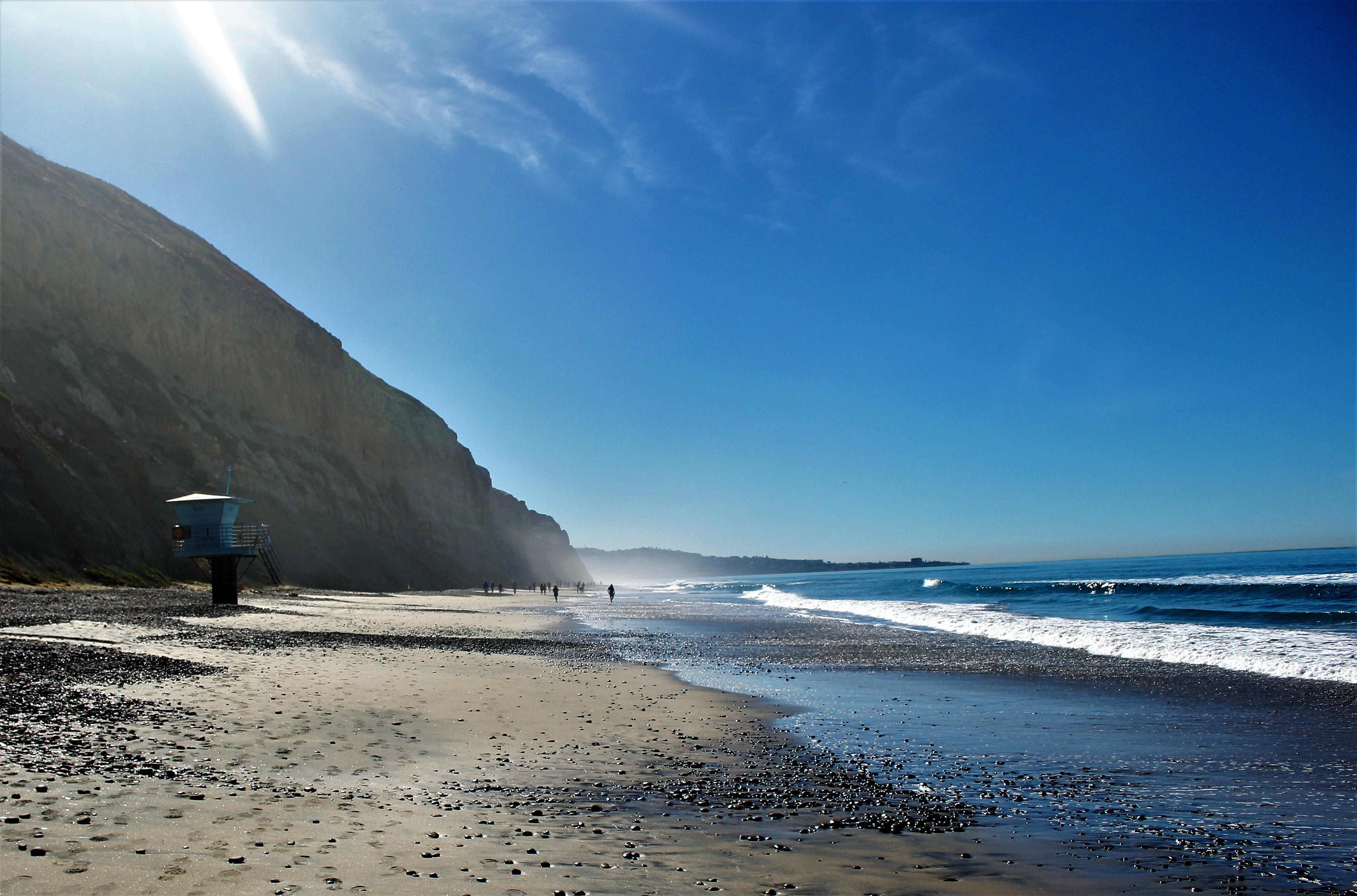 Torrey Pines Beach San Go The Best Beaches In World